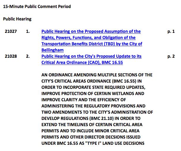 bellingham city council