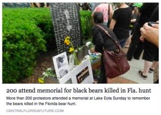 memorial for bear