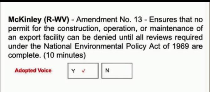 McKinley amendment 13