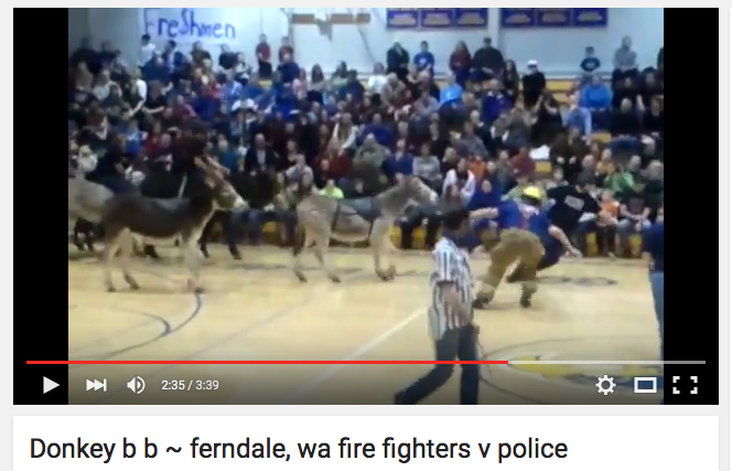 firefighters pull 3