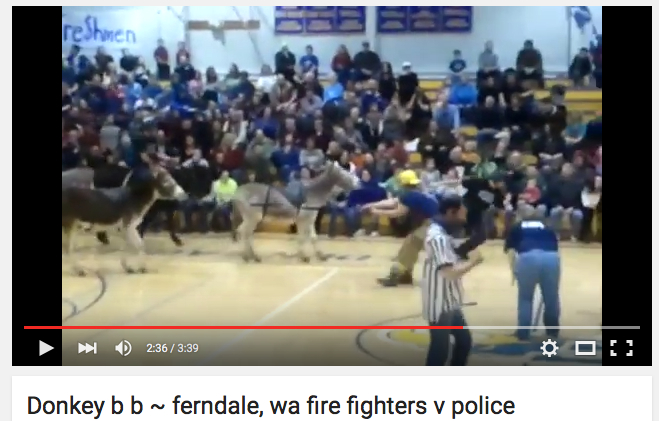 firefighters pull 4