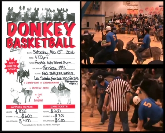 donkey bball poster try again