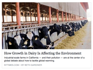 how growth in dairy