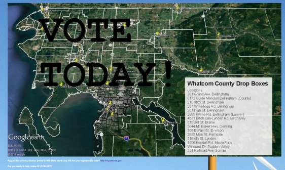 bellingham politics vote today