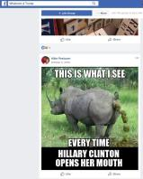 rhino hillary peetoom