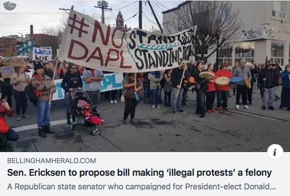 herald sen ericksen illegal protests